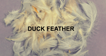 Duck-feather